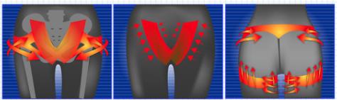 プロフェッショナルスレンダーメイクレギンスの骨盤補正の画像